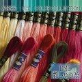 (dmc25-10) 【緑・黄緑系1】刺繍 刺しゅう糸 DMC 25番糸 豊富なカラーバリエーション クロスステッチ 手芸 クラフト